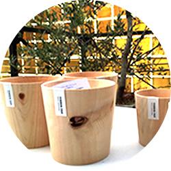 ヒノキの木鉢